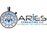 Aries Consulting LLC